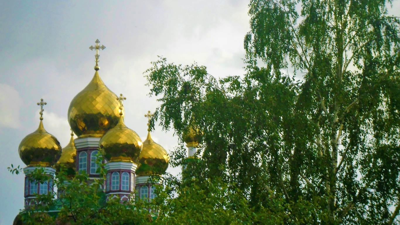 купола, дерево