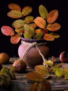 веточки, ягоды, шиповник, горшок