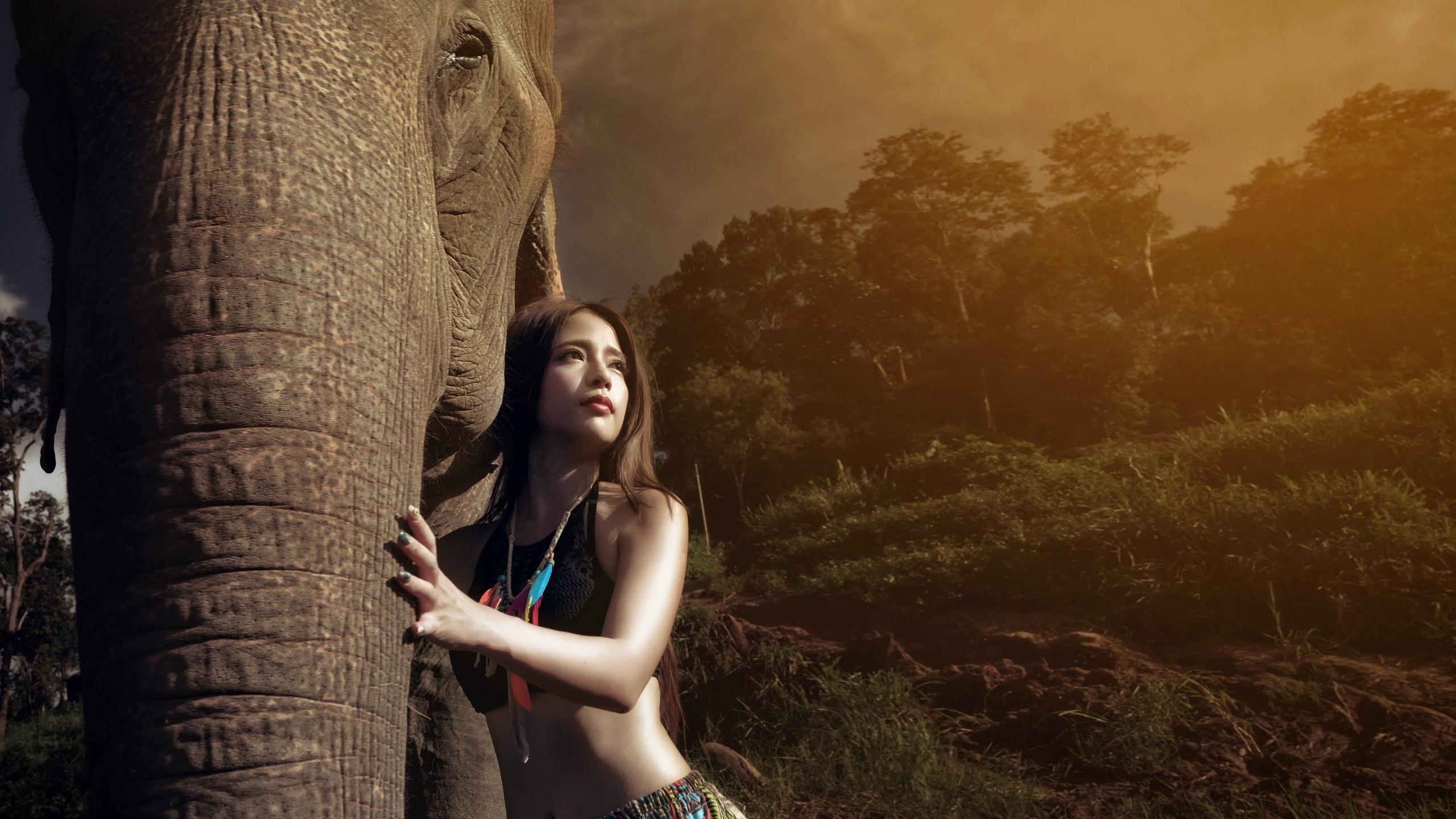 девушка, модель, позирует, азиатка, слон