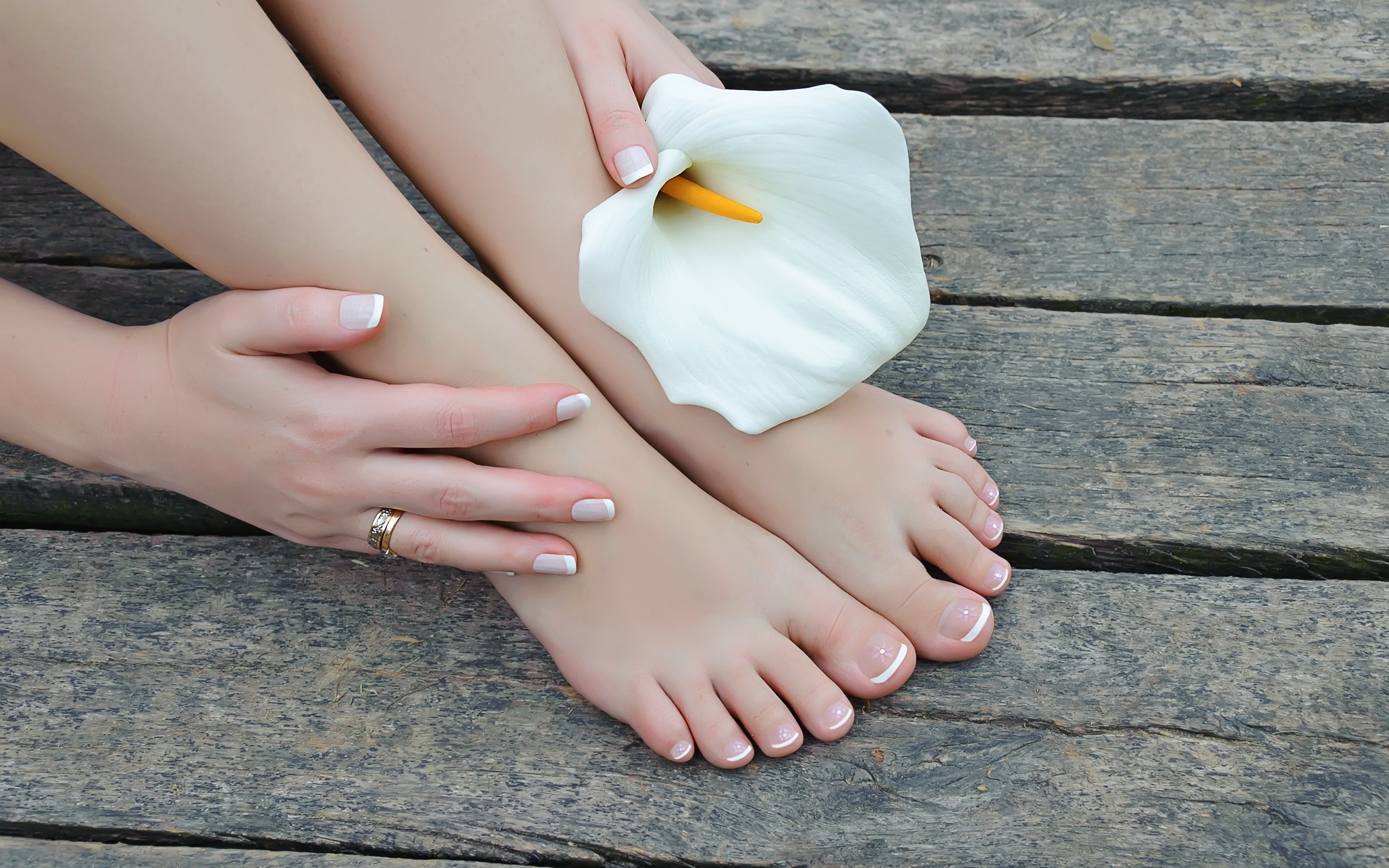 девушка, ножки, рука, цветок
