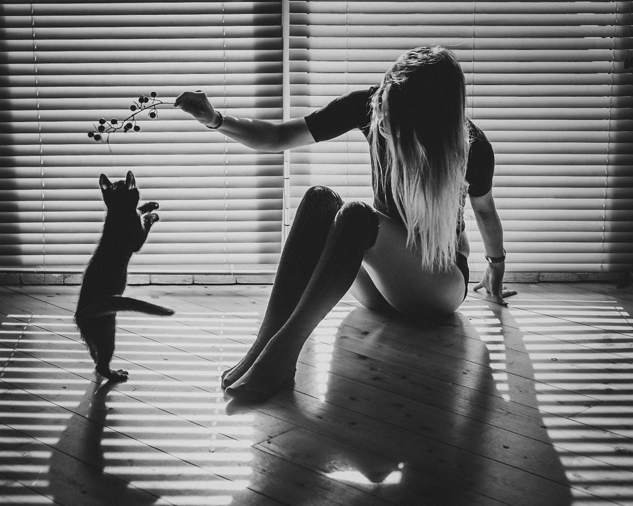 девушка, кошка, комната, играют, чб фото, настроение