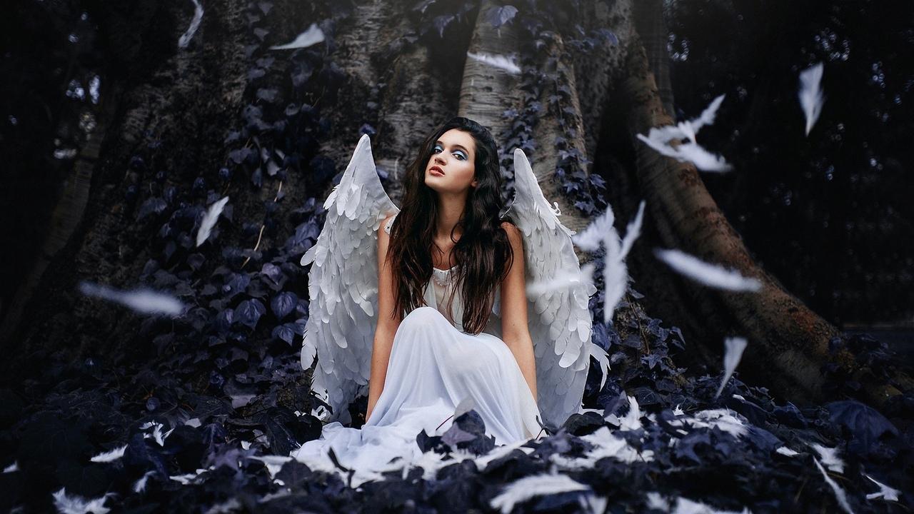 девушка, модель, позирует, ангел, крылья