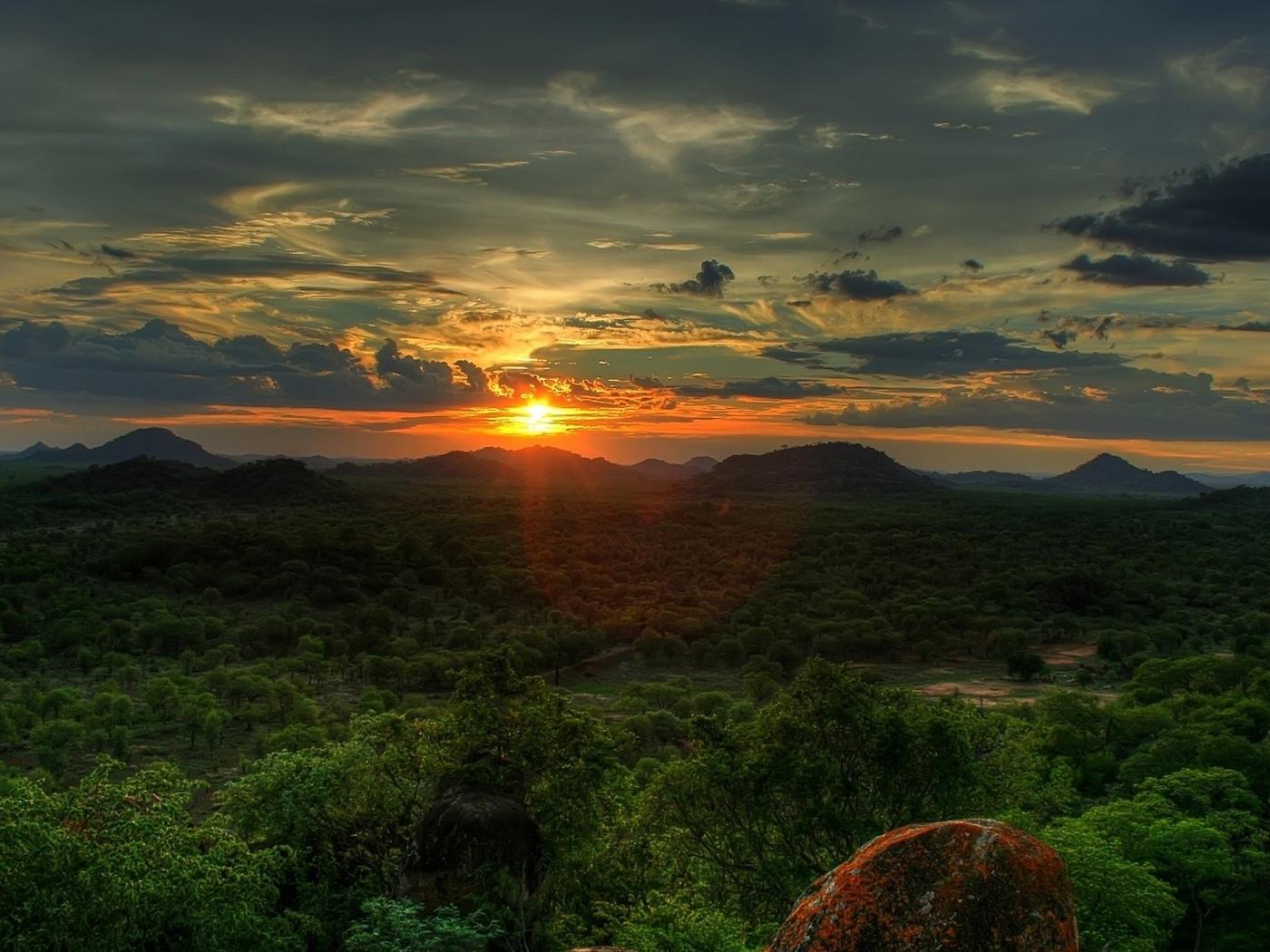 закат, лес, небо