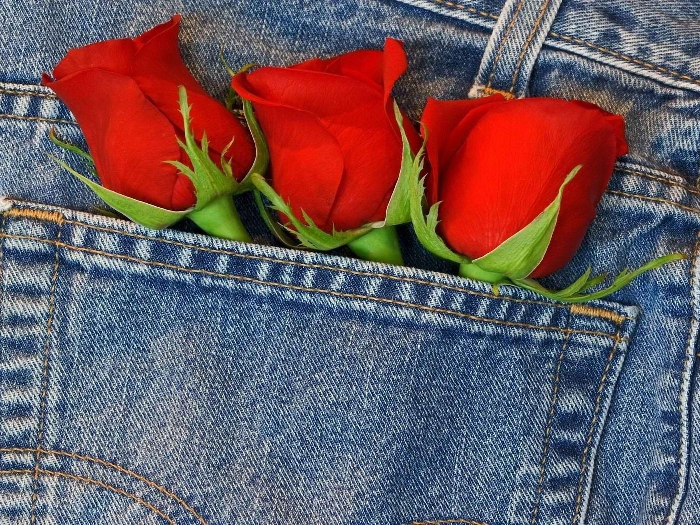 три бутона, роз, в кармане
