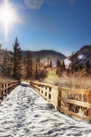 лес, деревья, cолнечный лучик, снег, горы, забор